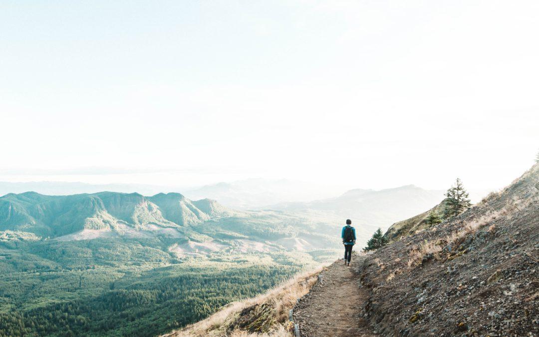 Proseguono le escursioni di Trekking col Treno: settembre tra vigneti, cammini della Memoria e il curioso fenomeno delle formiche alate