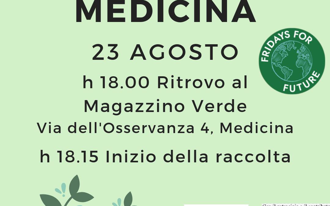 PuliAMO  Medicina – Iniziativa dell'Associazione Linea Gialla in occasione del Friday For Future