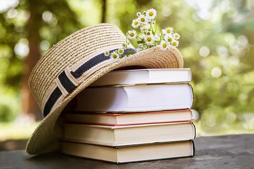 Biblioteca: orario estivo da lunedì 31 maggio